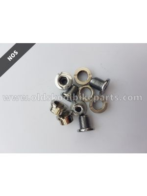 Chainring bolts 10mm